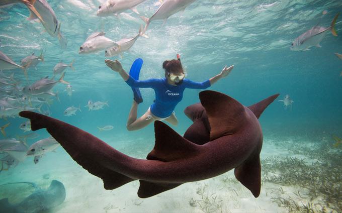 underwater-photography2