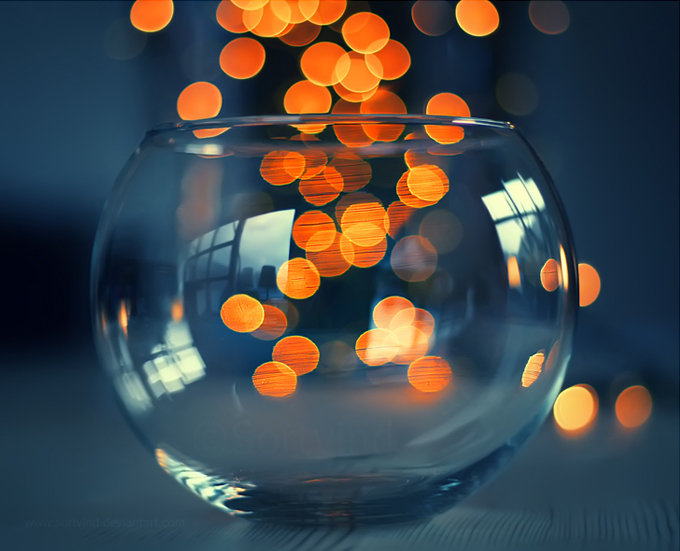 Bokeh-Photography