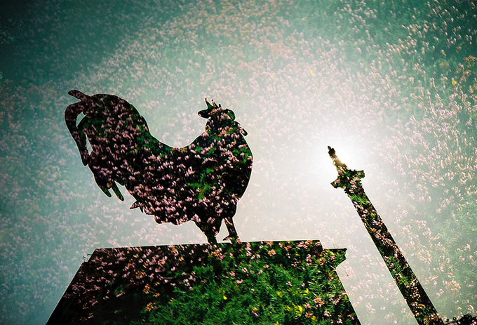 lomo-photography-examples